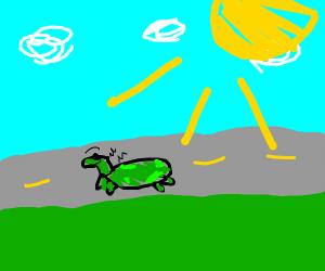 turtle/lizard sunbathing happily mid of road