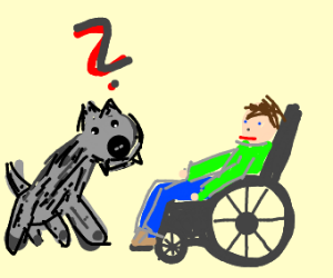 Wolf confused with a disabled man