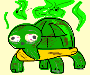 Smelly turtle