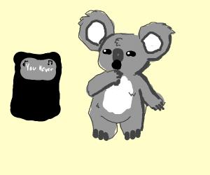 Koala Karaoke