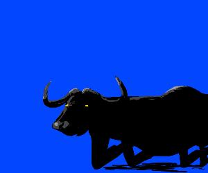 Ox Crawling