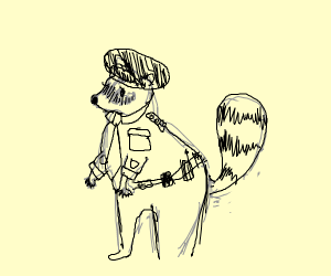 police raccoon