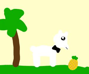 Tropical llama in a bowtie