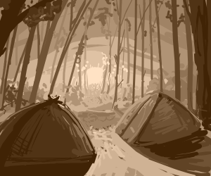 sunrise, forest, camp