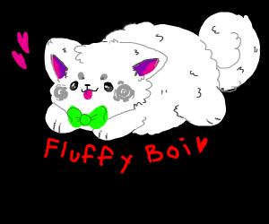Very fluffy puppy