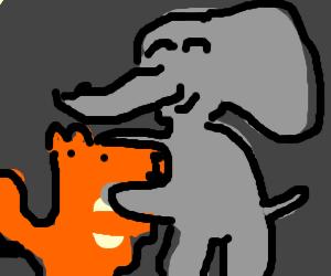 Elephant hugging fox (in dark room)