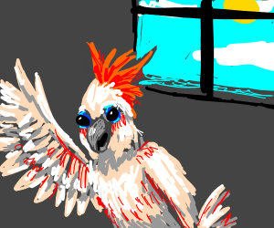 bloodied parrot