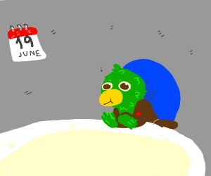 The green bird from DHMIS