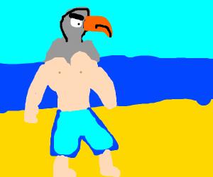Pigeon man hates the beach