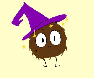 Wizard furry