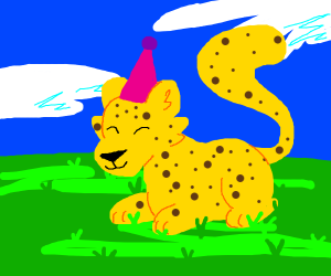 cheetah in a pink party hat