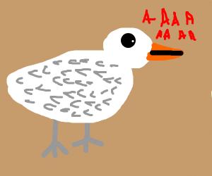 Yelling goose
