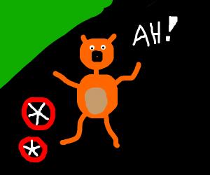cat HATES those wheels