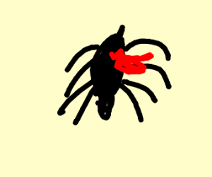 Spider bleeding