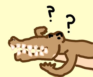 le confused croc