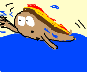 hotdog swims in ocean