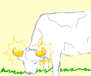 Melissa the golden horned cow