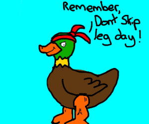 Muscular duck wears a bandana