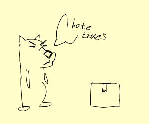 dog hates boxes