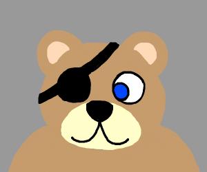Bear in eye patch.