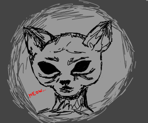 cat but its my nightmares