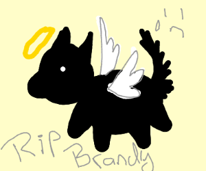 R.I.P brandy (dog) rest well pupper