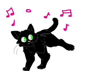 cat danacing with 3 legs