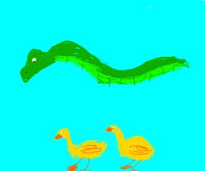 Dragon walks pet ducks