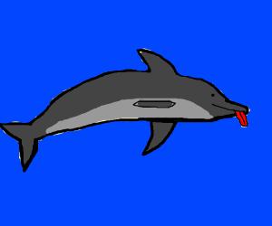 Mlep Dolphin