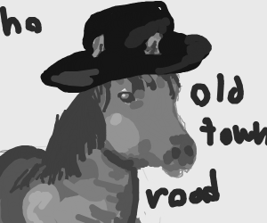 Old town road.. horse
