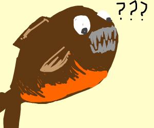 Surprised Piranha