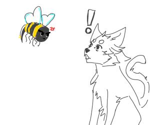 bee attack cat