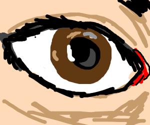 Detailed brown eye