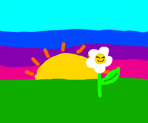 smilling flower in sunset