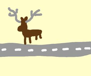 A moose crossing a road