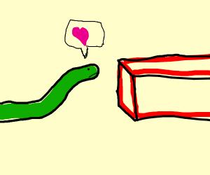 Snake loves brick