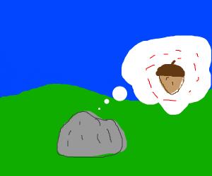 Stone thinking of an acorn