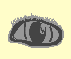 all-grey eye, no background
