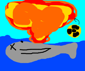 Nuked whale