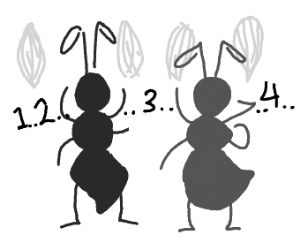 Ants counting