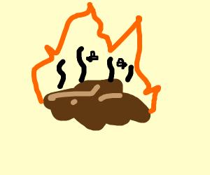 Burning poo