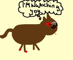 evil cat lurking