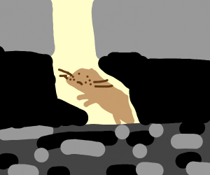 Beaver standing on the void