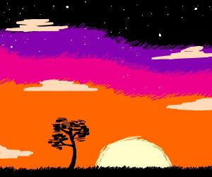 beautiful sunset with black tree