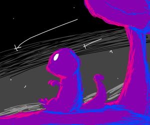 dinosaur sees a shooting star