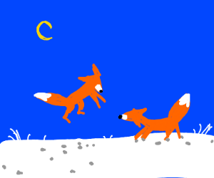 Fox playing in snow