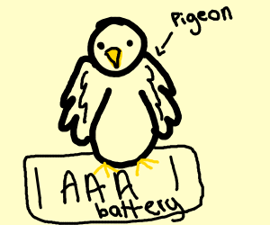 Pigeon sitting on top a AAA battery
