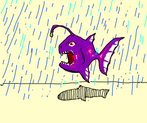 anglerfish in the rain