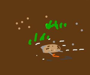 Elderly potato hurdles towards the ground