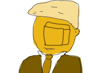 Donald trumps face is a block